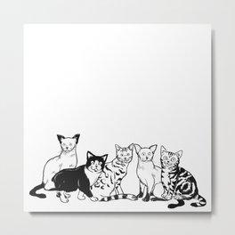 CAT AVENGER Metal Print