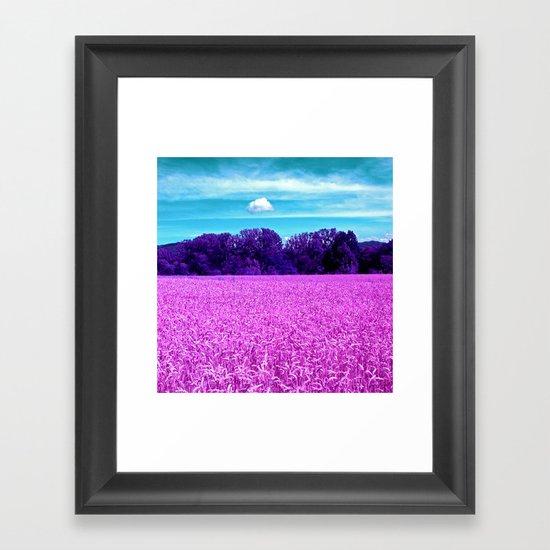 purple corn field I Framed Art Print