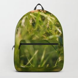 Autumn meadow Backpack