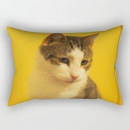 noodlehead Rectangular Pillow