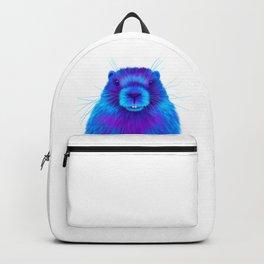 Josh the Marmot Backpack