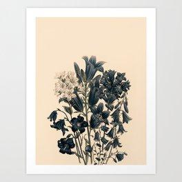 Flowers near me 11 Art Print