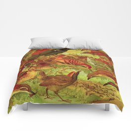 Amazonian Birds by Göldi & Emil August Belem Brazil Colorful Tropical Birds Scientific Illustration Comforters