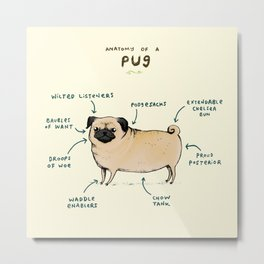 Anatomy of a Pug Metal Print