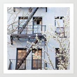 Brooklyn Spring Art Print