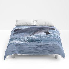 Bottenose dolphin Comforters