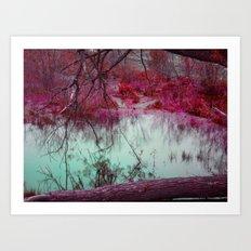 Reflection II Art Print
