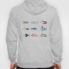 Happy Aquarium Dartfish Friends Hoody