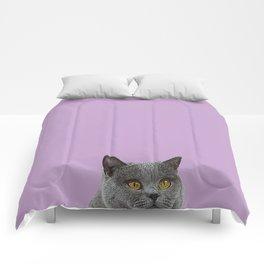 Lavender Home Decor Lilac Decoration British Short haired Cat Bag Pastel Colors Comforters