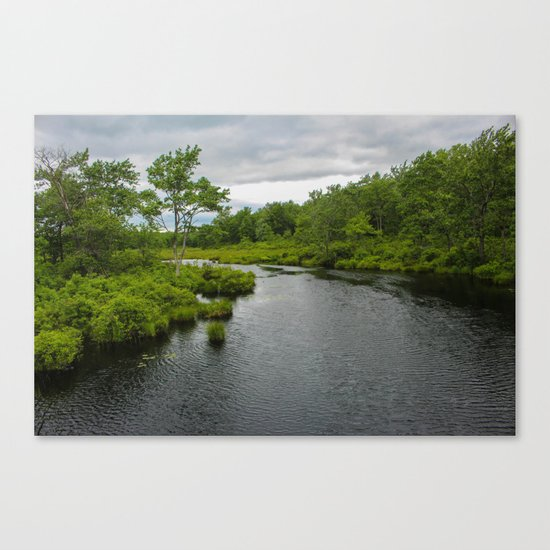 The Lake Canvas Print