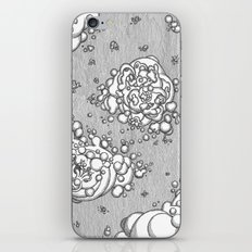 Matter in the Void iPhone & iPod Skin