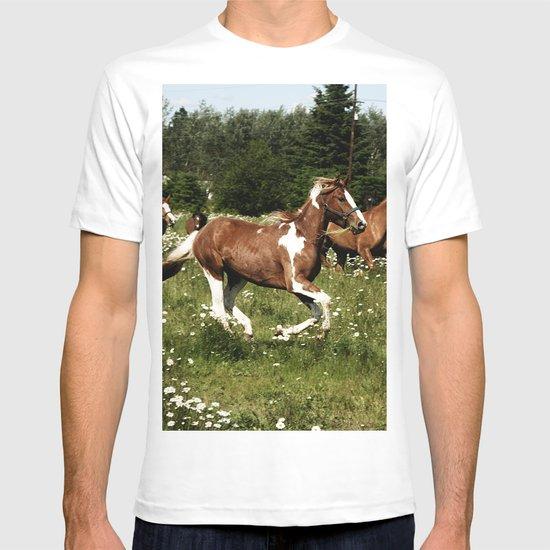 Spring Horse Run T-shirt