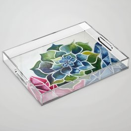 Succulents & Crystals Acrylic Tray