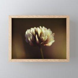 Sweet Clover Framed Mini Art Print