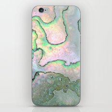Shell Texture iPhone & iPod Skin