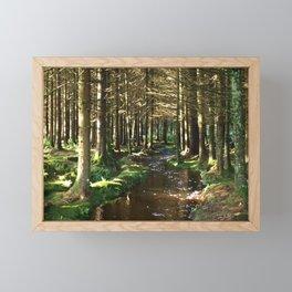 Golden Florest Framed Mini Art Print