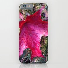 Many Blessings to You All this Fall iPhone 6s Slim Case