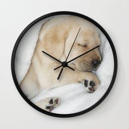Sleeping Golden labrador puppy Wall Clock