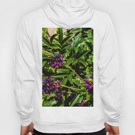 Purple Flowers Hoody