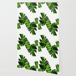 Green banana leaf Wallpaper