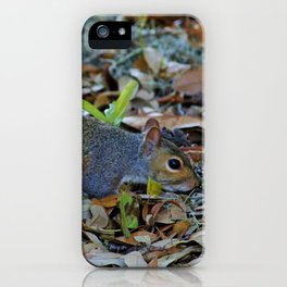 Searching For Food iPhone Case