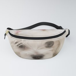 Cindy Fanny Pack