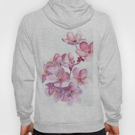 Sakura Sweeties Hoody
