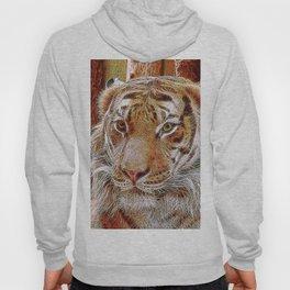 Extraordinary Animals - Tiger 2 Hoody