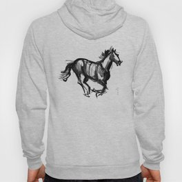 Horse (Far from perfection) Hoody
