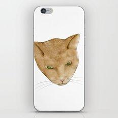 Totem Kitteh 2 iPhone & iPod Skin