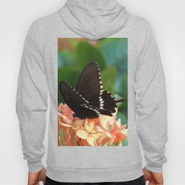 Kowloon Wings Hoody