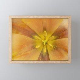 Flower up close Framed Mini Art Print