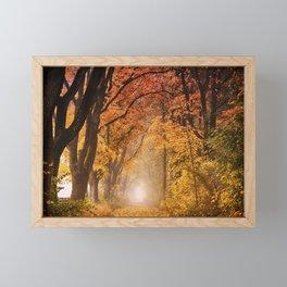Autumn Fall Forest Path -  Nature Landscape Photography Framed Mini Art Print