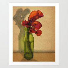 Calla lilies in bloom Art Print