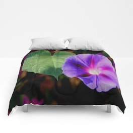 Beautiful Single Morning Glory Flower and Leaf Comforters