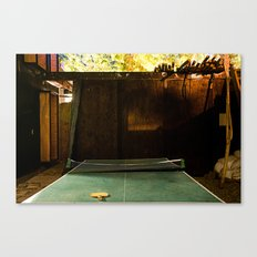 Low Light Backyard#1 Canvas Print