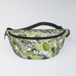 texture of the green cactus with white flower in the desert Fanny Pack