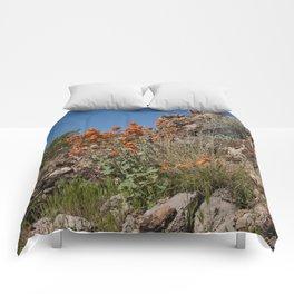 Desert Wildflowers & Cacti in Spring Comforters