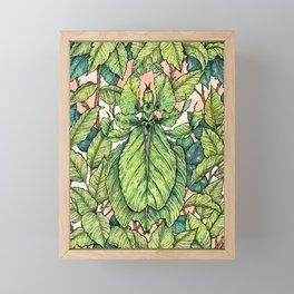 Leaf Mimic Framed Mini Art Print