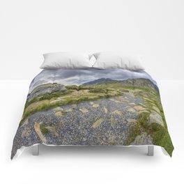 Ramblers Path To Tryfan Comforters