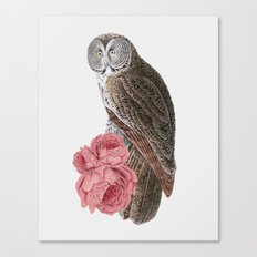 The owl of love Canvas Print