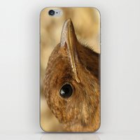 ben giles iPhone & iPod Skins featuring Ben by J Coe Photography