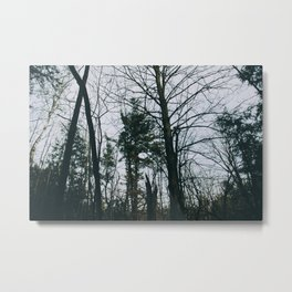 Colorless forest Metal Print