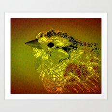 Amber Bird Art Print