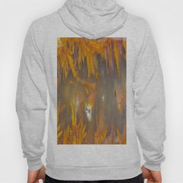 Mexican Flame Agate Hoody