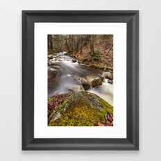 a river in the woods Framed Art Print