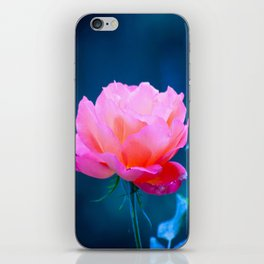 Flowers of early spring iPhone Skin