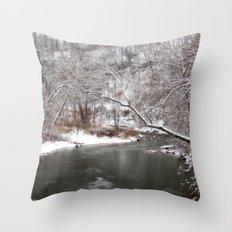 Frosty Creek Throw Pillow
