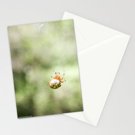 october orbweaver Stationery Cards