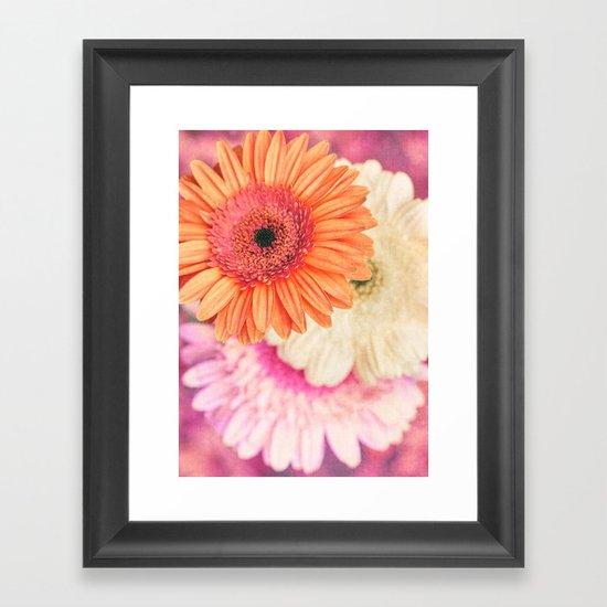 Sweet Daisy Sorbet Framed Art Print